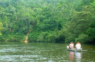 "<span style=""color: #008000""><a style=""color: #008000"" href=""https://www.mayamountainlodge.com/index.php/canoe-tour/"">Local Culture</a></span>"