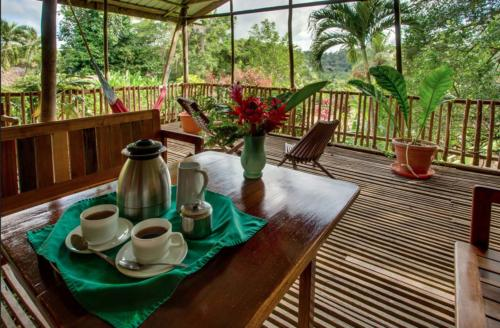 Parrots-Perch-Lounge-14-Room-Cottage-Lodge-Accomidation-MayaMountain-Belize-Ecolodge-Ecotourism-Resort-Healthy-Organic-Wellness-Permaculture-Retreat