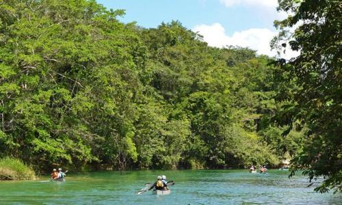 Canoeing to San Ignacio - Macal River